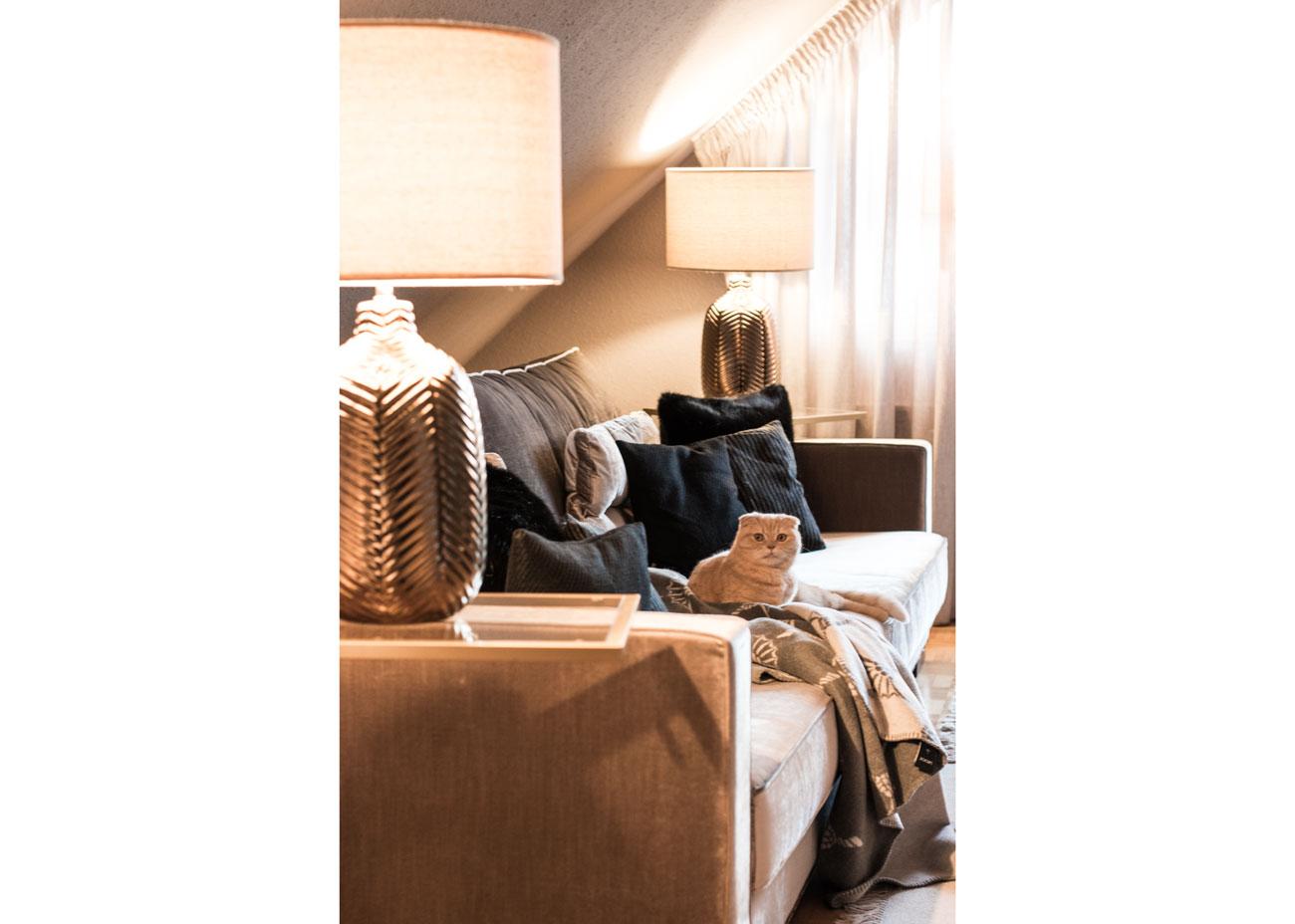 Wohnung renovieren wohnzimmer couch taupe kissen schwarz leuchten katze